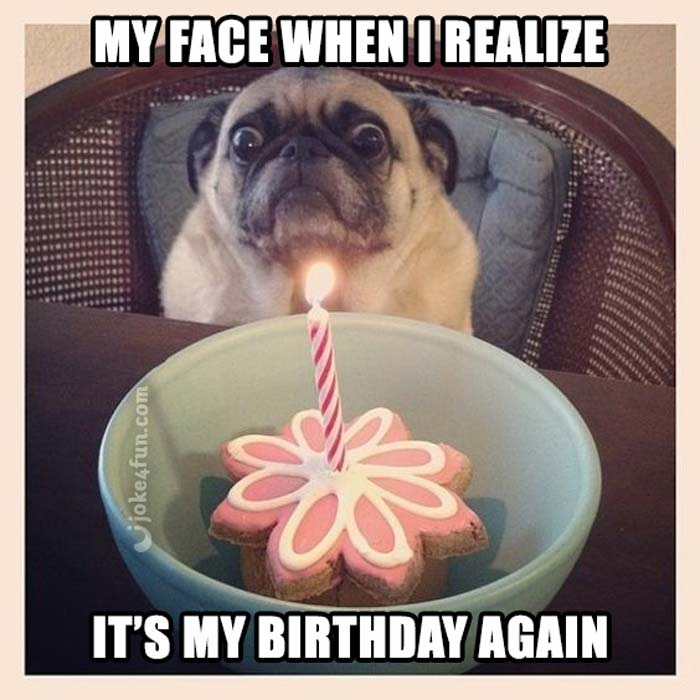 Joke4fun Memes Thats Why I Only Put One Candle On My Cake