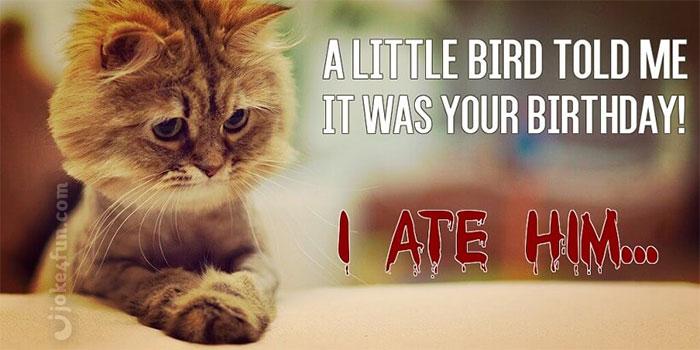 Joke4Fun Memes: Should never name your cat Jason!