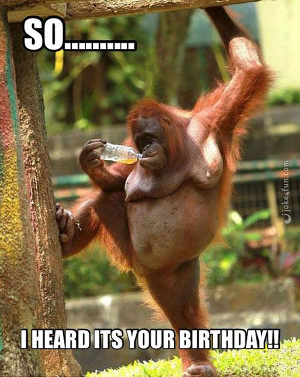 Happy Birthday Meme Funny Birthday Memes Birthday Meme